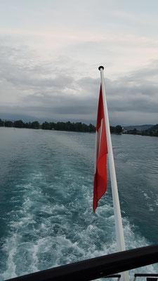 Dinus Schiffahrt über den Thunersee