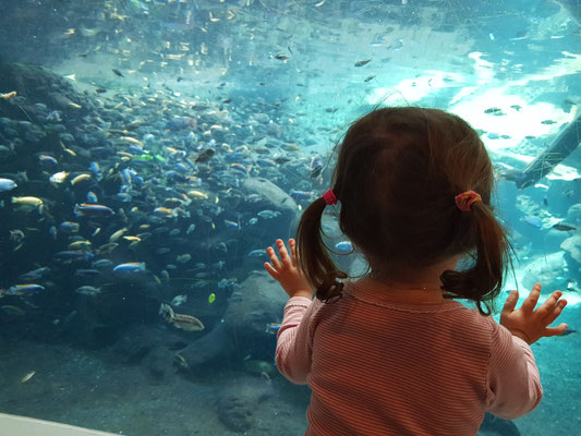 Julia im Zoo - sie und das Wasser....