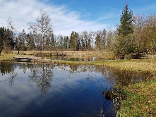 Naturschutzgebiet Hurst