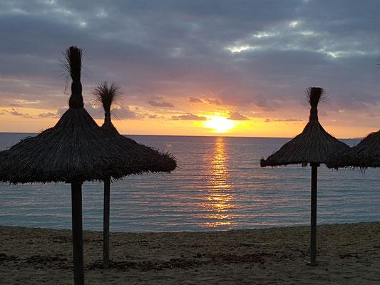 Traumhaft, Blick auf den Ballermann in Mallorca