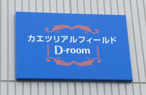 カエツリアルフィールドD-room