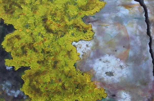 Flechte auf Mauerwerk, 2017, Acryl, Spachtelmasse, Fineliner auf Lwd, 50 x 70 cm