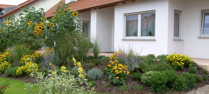 wärmeliebender Reihenhaus-Vorgarten