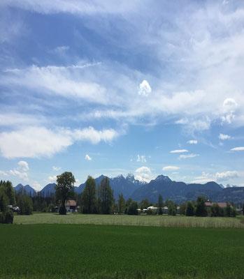 unverbaubarer Blick auf die Alpen
