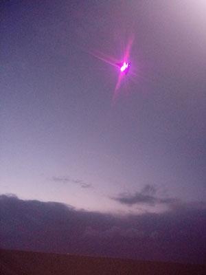 LED Drachen