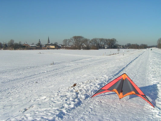 Zons im Januar 2009