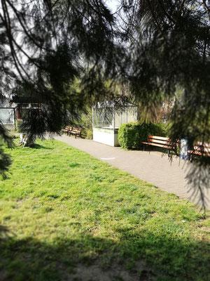Botanischer Garten Duisburg-Duissern am Kaiserberg