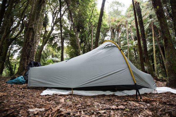 Kaniwhaniwha Stream Camp (Day 33)