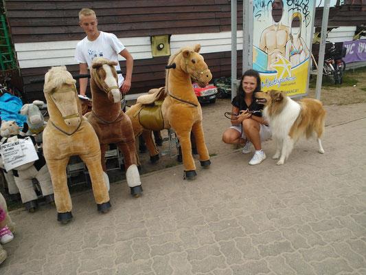 das sind aber komische Pferde äh Ponys