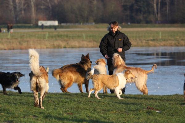 Und hier mal mit Herrchen - der Hundeflüsterer :D