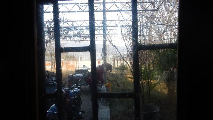 """Blick aus der Küche des """"Bunkers"""", der Datsche die als Winterlager diente"""