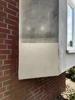 Vor dem Reinigen der WDVS-Fassade bei Algenbefall, legt man Pobeflächen an
