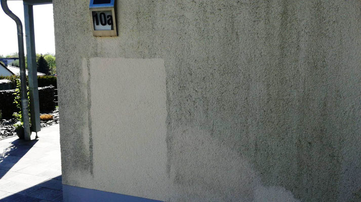 Kosten einer Algenentfernung an der Fassade, werden anhand der Musterfläche berechnet