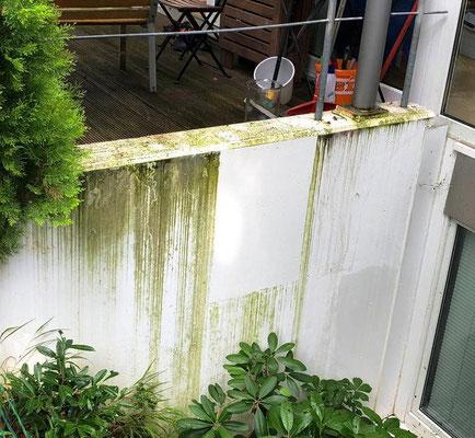 Für die Abschätzung der Kosten einer Fassadenreinigung