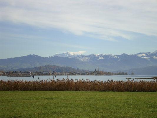 Blick über den Obersee. Hinten der Säntis.