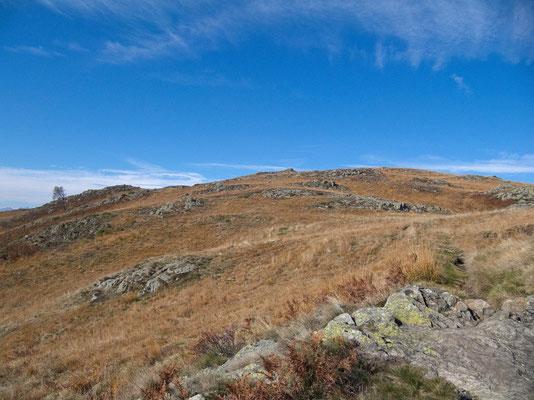 Alpweide unterhalb der Cima di Medeglia in herbstlichen Farben