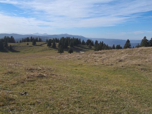 Blick über die Juralandschaft nach Südwesten