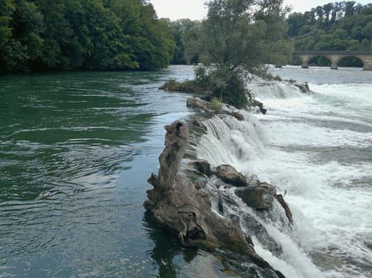 Wassermassen kurz vor Erreichen des Rheinfalls