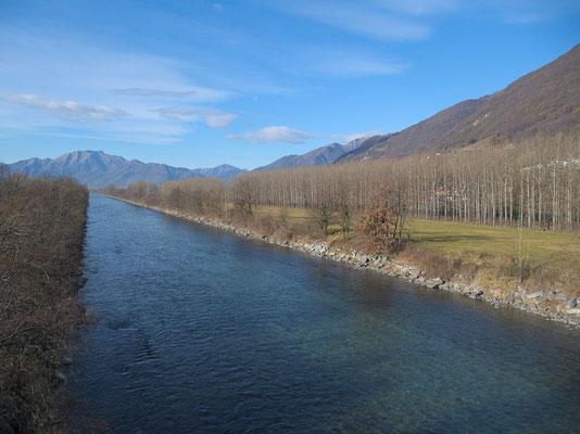 Ticino: Blick von der Brücke bei Gudo nach Südwesten (Richtung Langensee). Entlang des Flusses hat es kilometerlange Pappelalleen.
