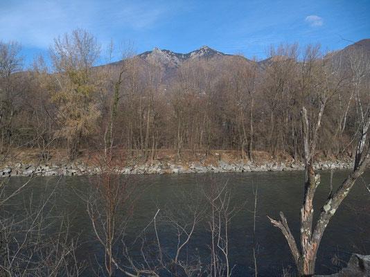 gezähmter Ticino