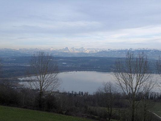 Blick auf das Chablais und die Berner Alpen