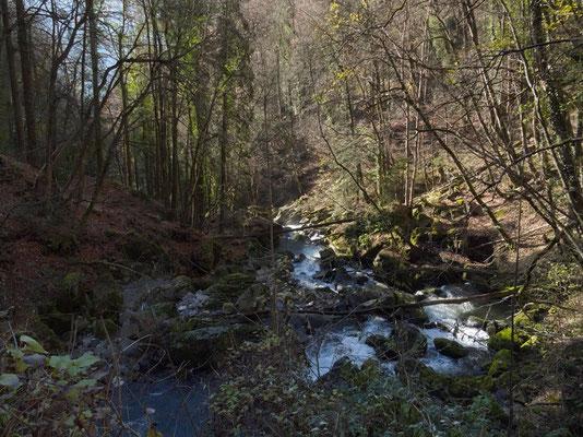 Tobel des Seerenbachs