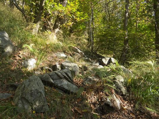 ein echter Tessiner Bergweg hat viele Granit-Tritte
