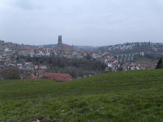 Kathedrale, Altstadt, Zähringerbrücke und Pont de la Poya