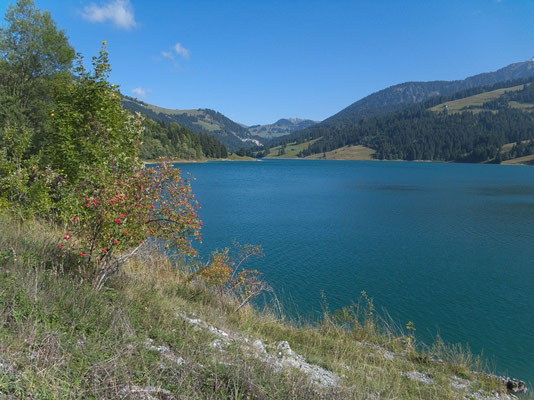 Lac de L'Hongrin