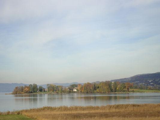 Die malerische Insel Ufenau im Zürichsee. Sie liegt auf Schwyzer Kantonsgebiet und gehört dem Kloster Einsiedeln.