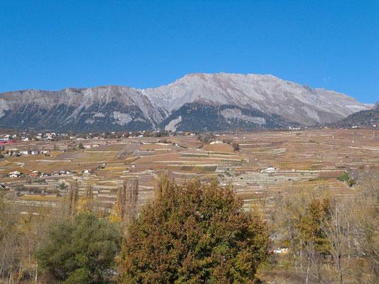Die Weinberge zwischen Sion und Savièse profitieren von einer sehr sonnigen Lage
