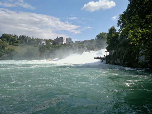 Blendend weisse Gischt des Rheinfalls