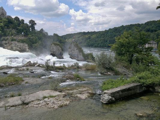 Die beiden Felsen mitten im Rheinfall