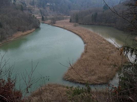 Im Lac de Pérolles (Stausee) hat es grosse Schilfgebiete