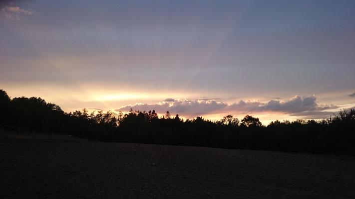 Sonnenuntergang Goldbach 01.09.2019