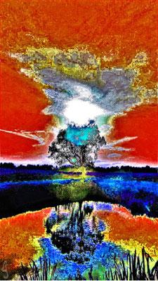 Mein Freund der Baum | Digital-Fotografie überarbeitet auf Leinwand | 90x60cm