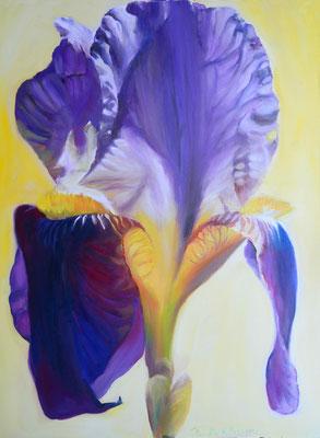Lilie | Öl auf Leinwand | 70x90cm