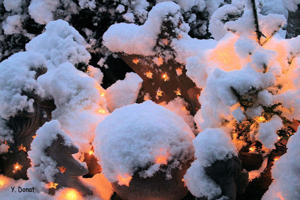 Winterzauber im Januar