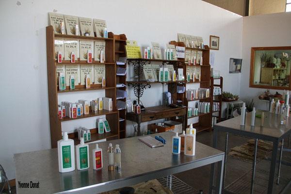 Die besten Aloe-Vera-Produkte !