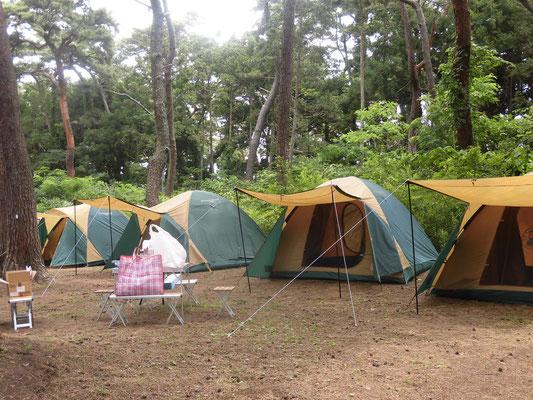 キャンプを立てるのはお子さんの方がよく知っていて、1時間ほどでできました。