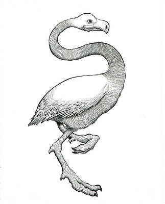 "Inktober drawing, 2017. ""Flamingo"" 8.5x11"""