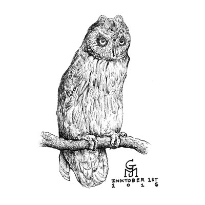 "Inktober drawing, 2016. ""Owl"" 9x12"""