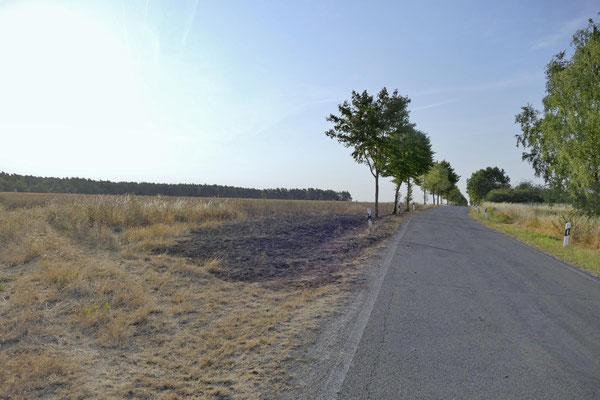 Blick Richtung Belsdorf