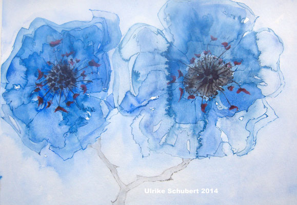 Aquarel, 2014 / Ulrike Schubert