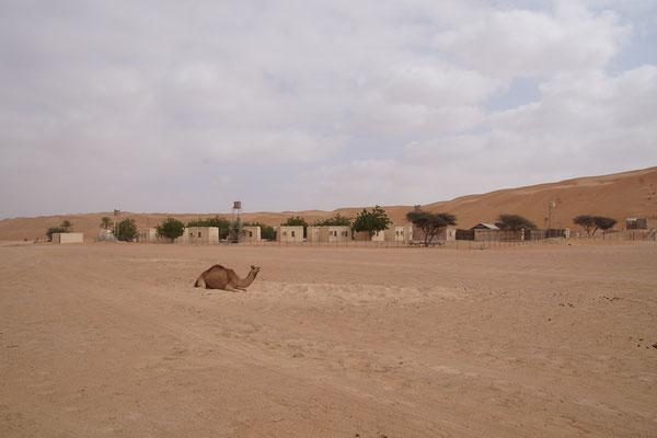 Wüstenfeeling mit Dusche und Klimaanlage.........