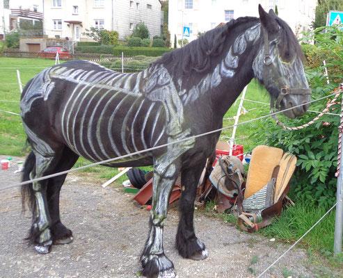 schwarzes Pferd mit einem neonfarbenen Skelettt aufgemalt - Tod