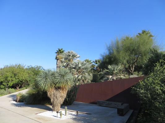Botanischer Garten Barcelona Freilandpalmench Internetplattform