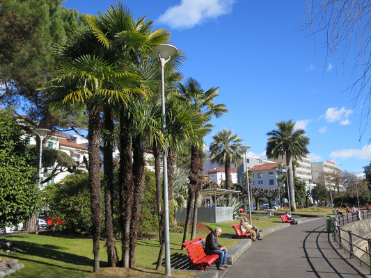 Promenade von Muralto