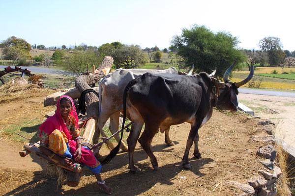 Fährt man über Land, ist die bittere Armut der Landbevölkerung Indiens überall erkennbar.