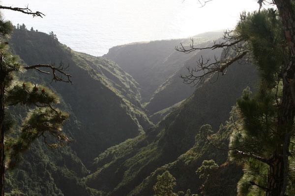 Direkt am Kraterrand gibt es in 1300 Metern Höhe einen kleinen Parkplatz und einen etwa 2.5 Kilometer langen Rundweg zu den Aussichtspunkten